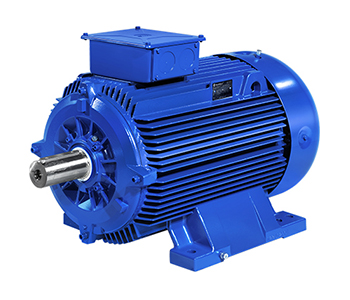 Marelli 0.55kw Electric Motor
